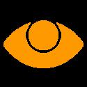 eye, retina, iris